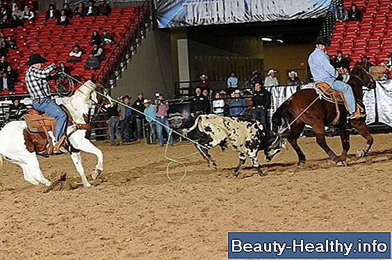 Team Roping Tips til begyndere