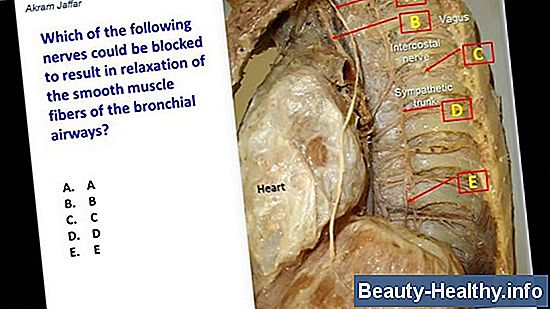 Bronchial Spasm Behandling
