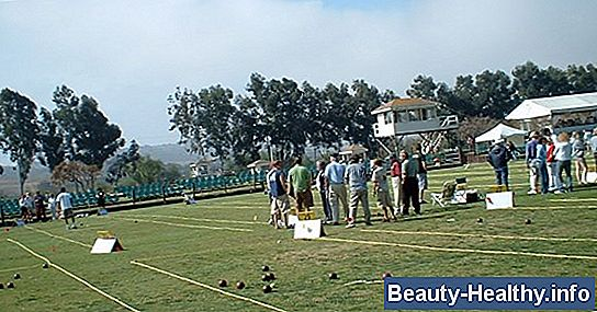 Bocce Ball vs. Boules
